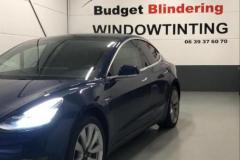 Ramen Blinderen Tesla